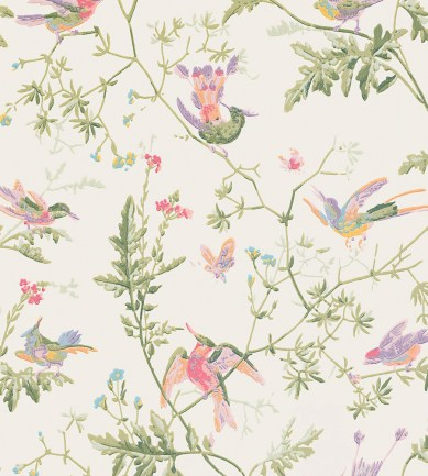 Cole and Son Hummingbirds 100-14067 tapéta - Paisley Home