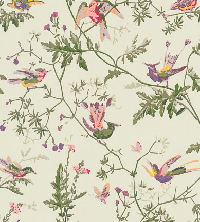 Cole and Son Hummingbirds 100-14070 tapéta - Paisley Home