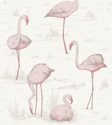 Cole and Son Flamingos 95-8045 tapéta - Paisley Home