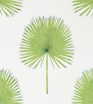 Sanderson Fan Palm Botanical Green tapéta